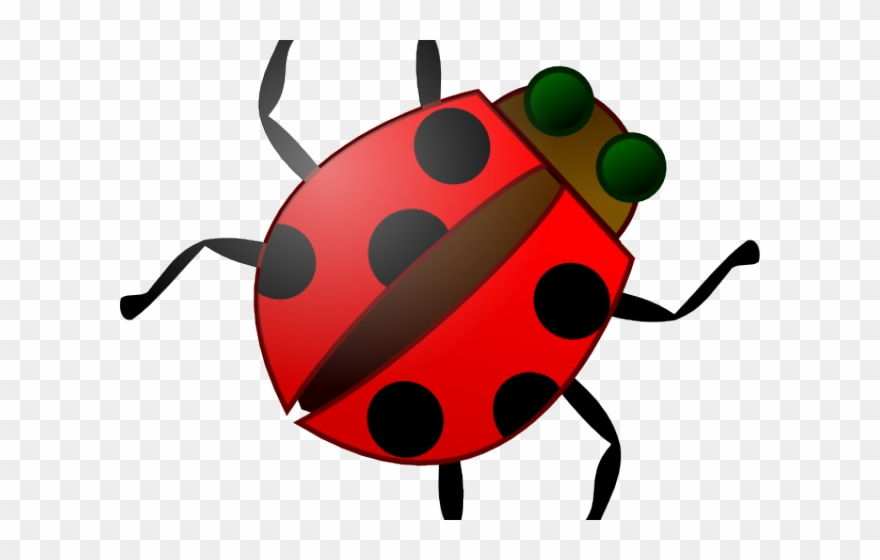 Insect png clip art. Bug clipart kid