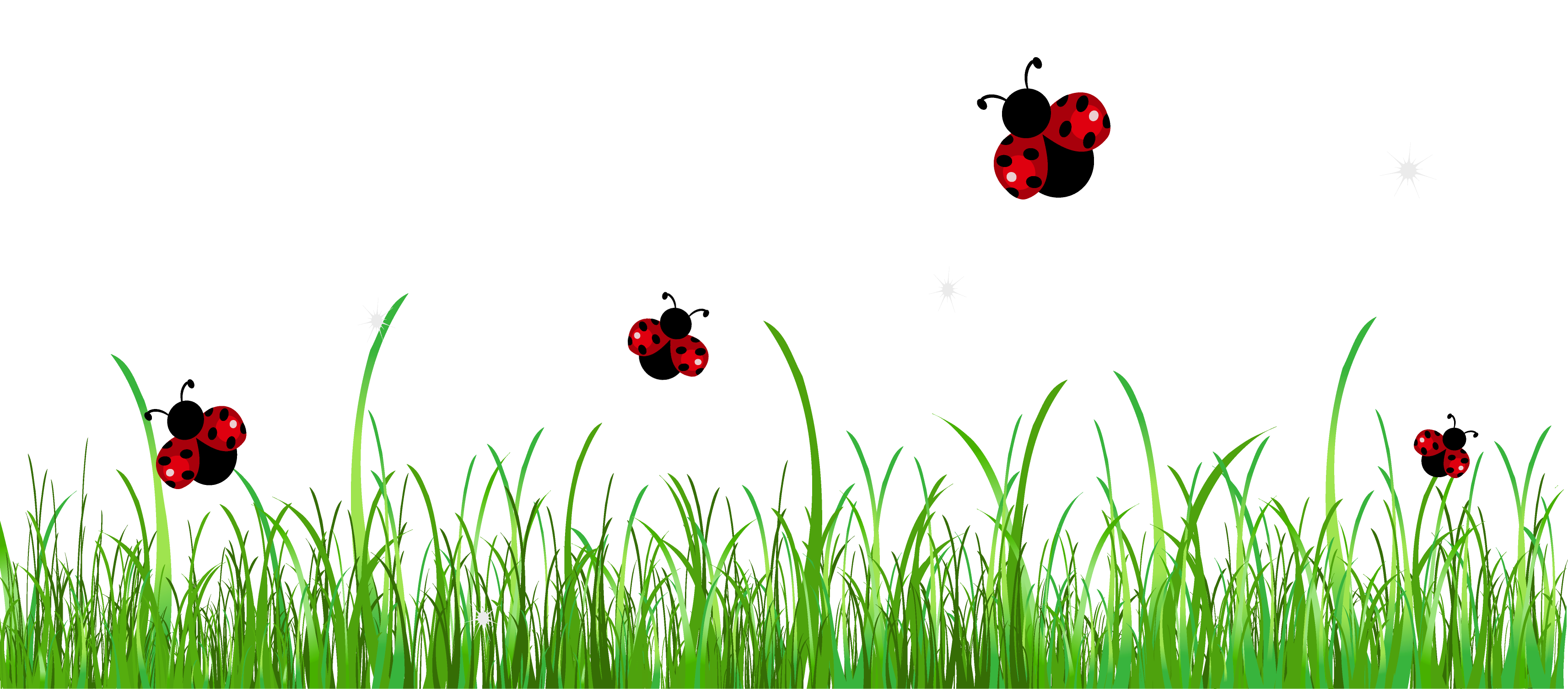 Ladybugs clipart frame. Lady beetle border chesterbrook
