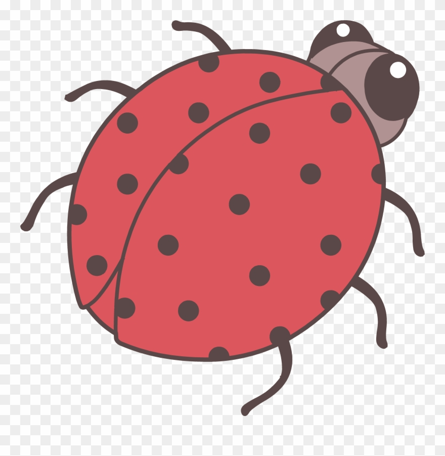 Beetle clipart little bug. Cute drawing png transparent