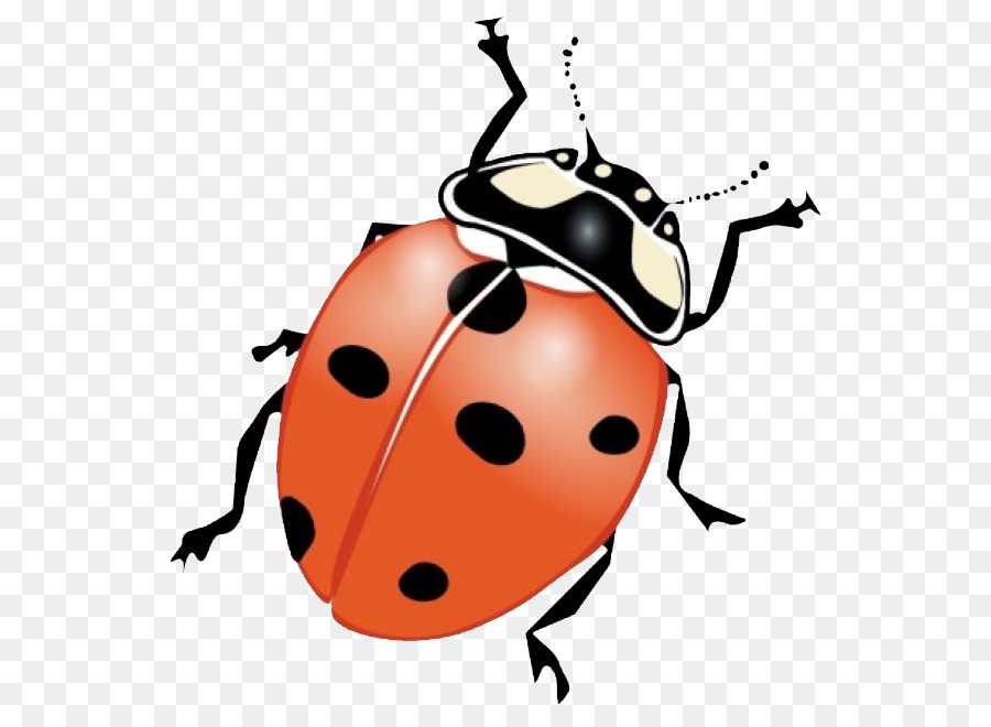 Beetle clipart little bug. Insect clip art ladybug