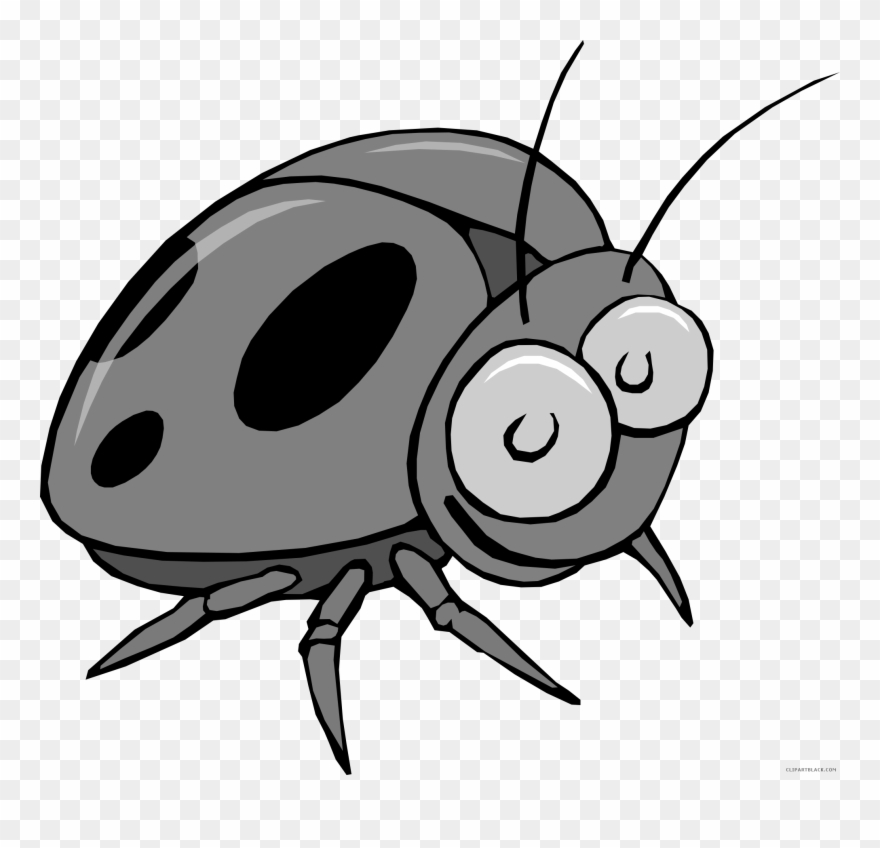 Beetle clipart little bug. Insect animal free black