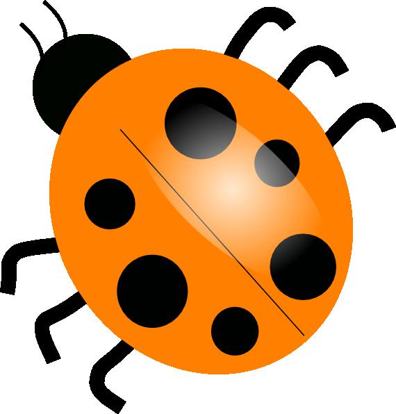 Insect clipart invertebrate animal. Orange ladybugs clip art