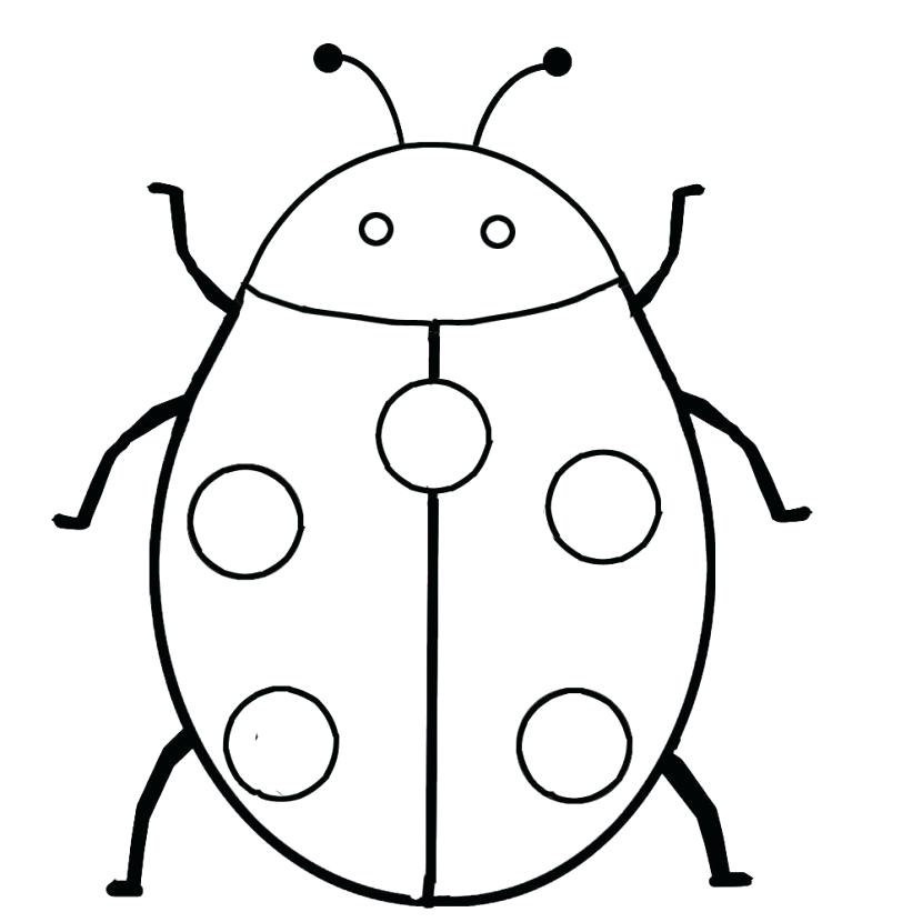 Beetle clipart outline. Insect arthropods moth butterfly