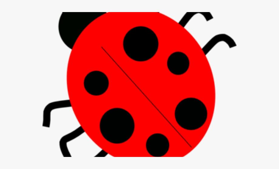 Ladybugs clipart red ladybug. Lady beetle clip art