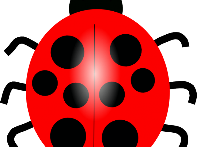 Hd lady beetle blue. Ladybugs clipart red animal