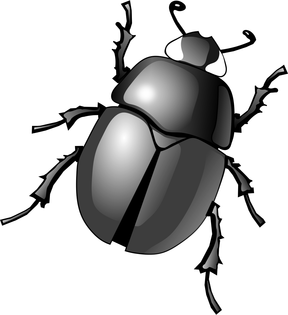 Dung clip art transprent. Insects clipart scarab beetle