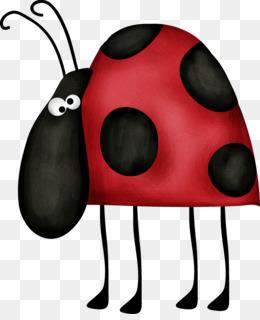 Ladybird euclidean vector clip. Beetle clipart simple