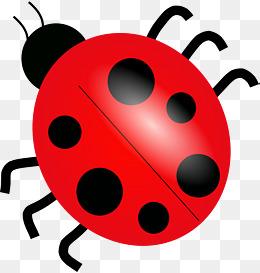 Beetle clipart simple. Cartoon png vectors psd