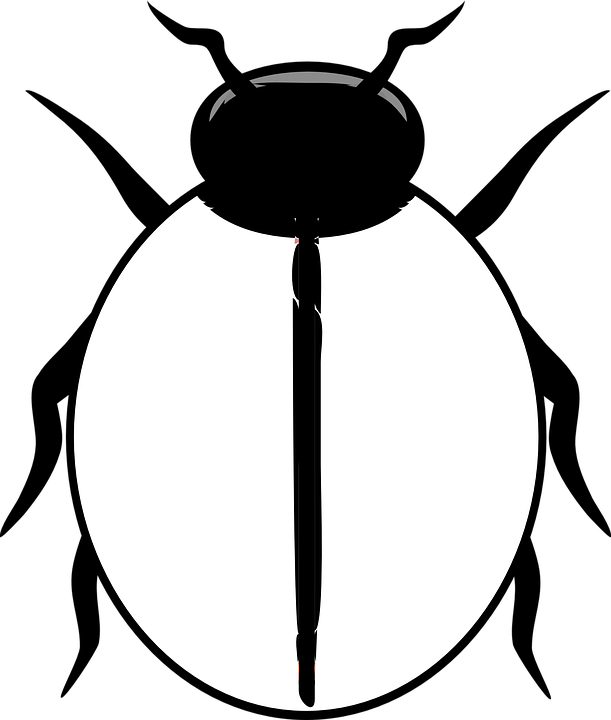 Insects clipart sad. Black and white ladybug