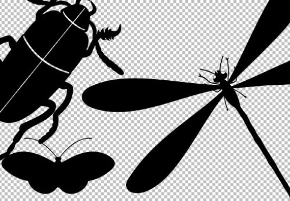 Fly clipart bug. Bugs svg silhouettes cuttable