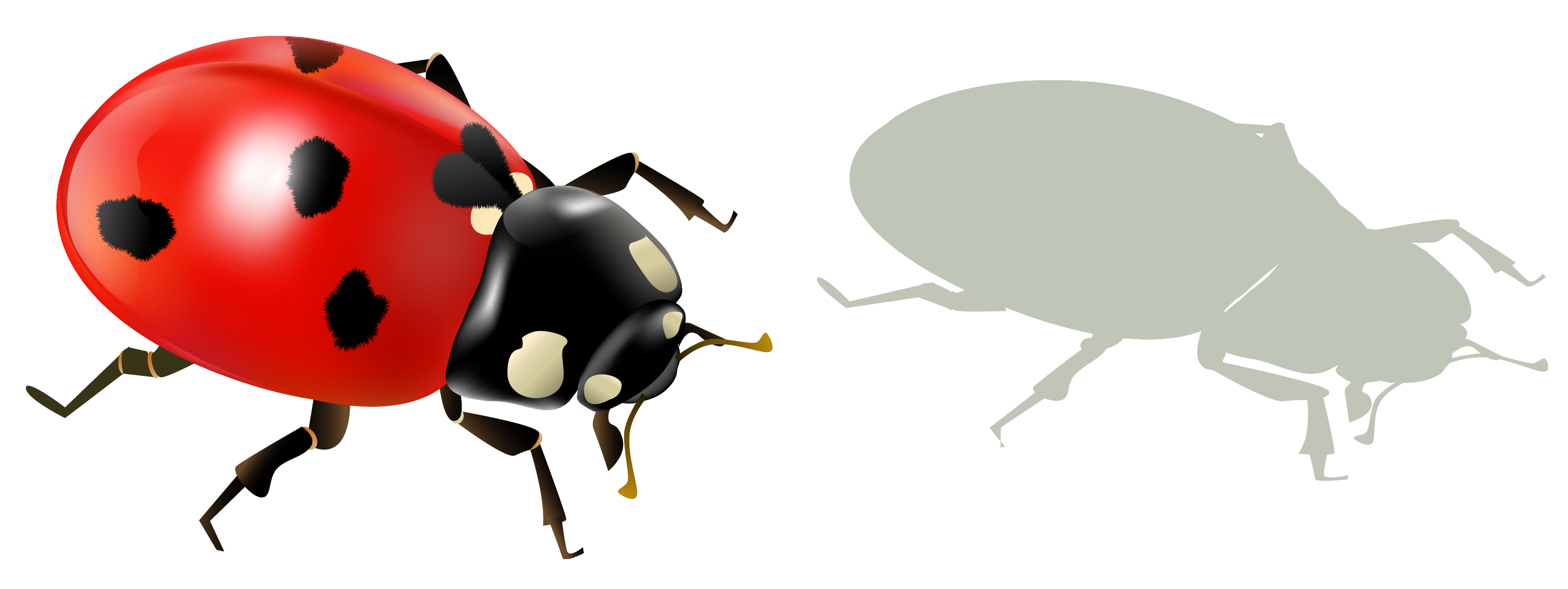 Andshadow png picture gallery. Ladybug clipart christmas