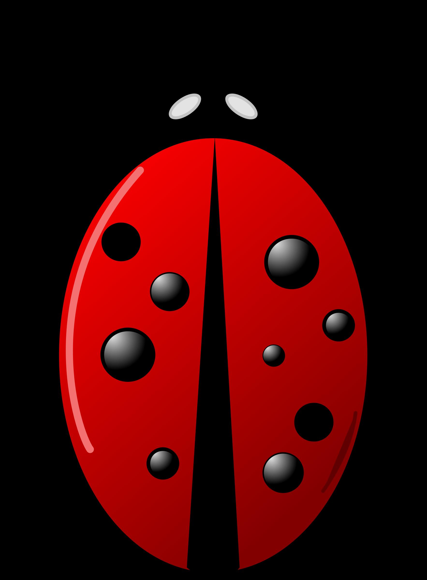 Beetle clipart stylized. Ladybug big image png
