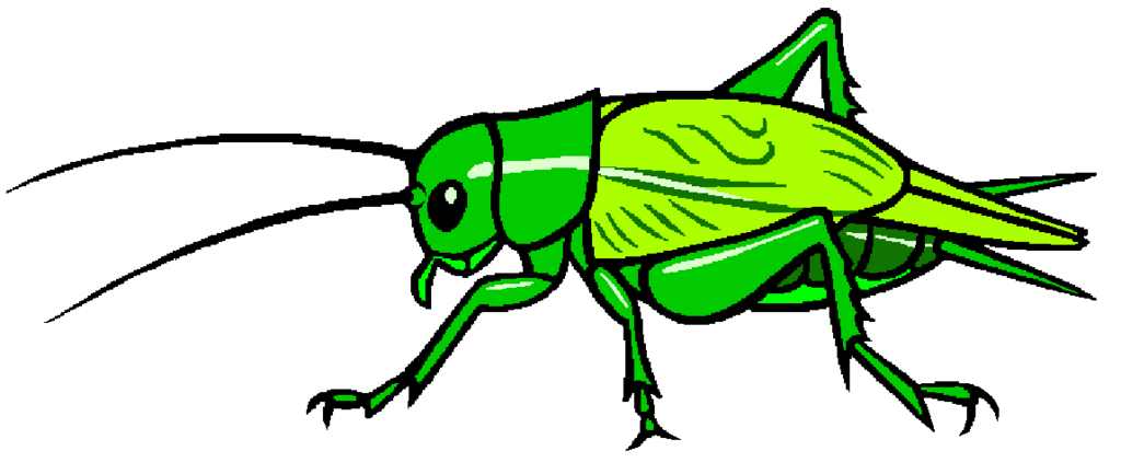 Cricket by misterbug on. Beetle clipart stylized