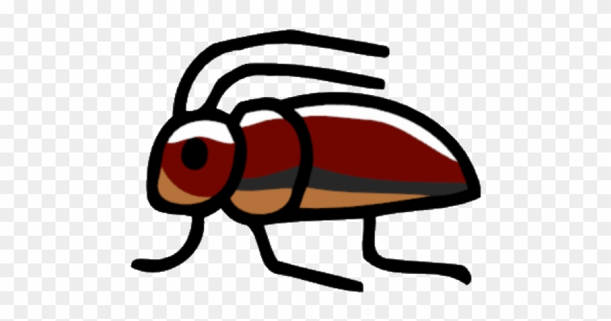 Insect png download . Insects clipart water beetle