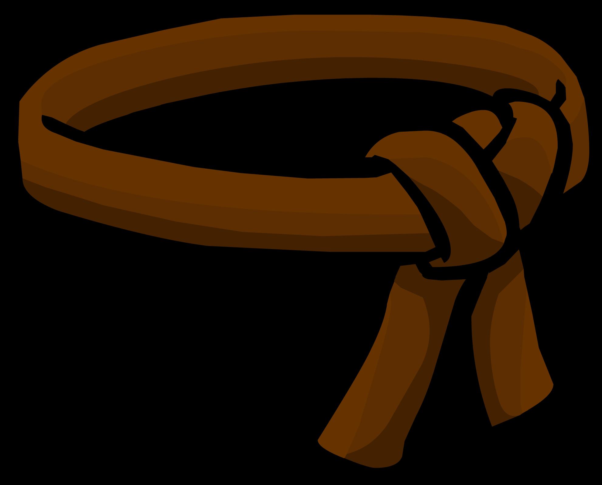 Belt clipart brown belt. Ninja club penguin wiki