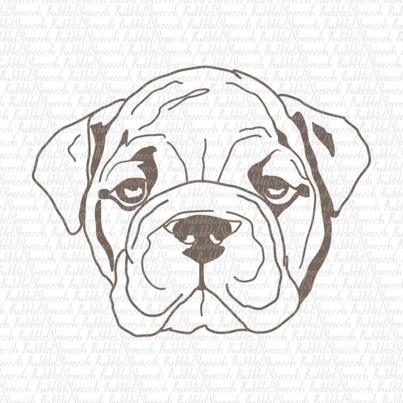 Bulldog svg vector art. Belt clipart dog