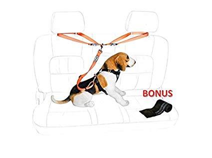 Amazon com car leash. Belt clipart dog