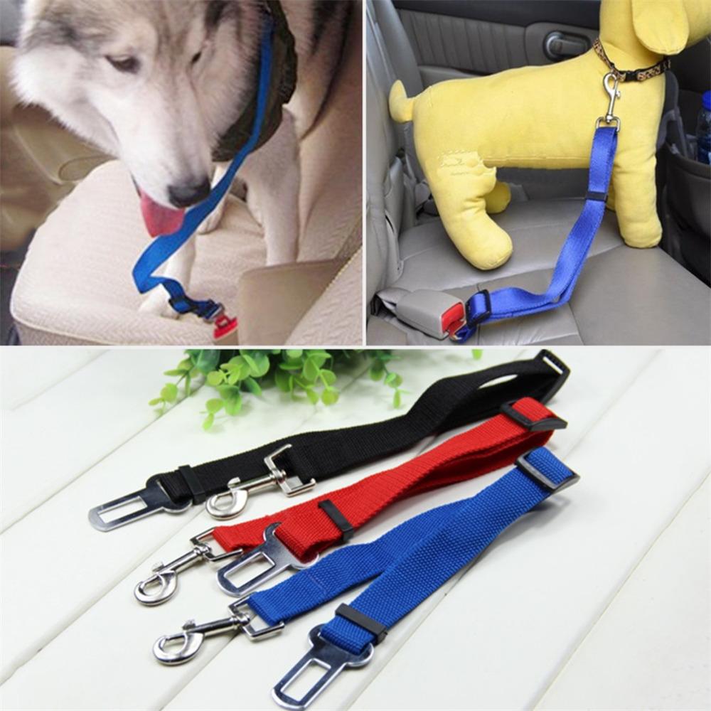 Car seat clip noten. Belt clipart dog