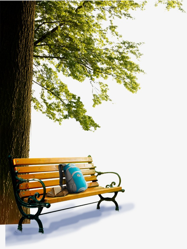 Png vectors psd and. Bench clipart park tree