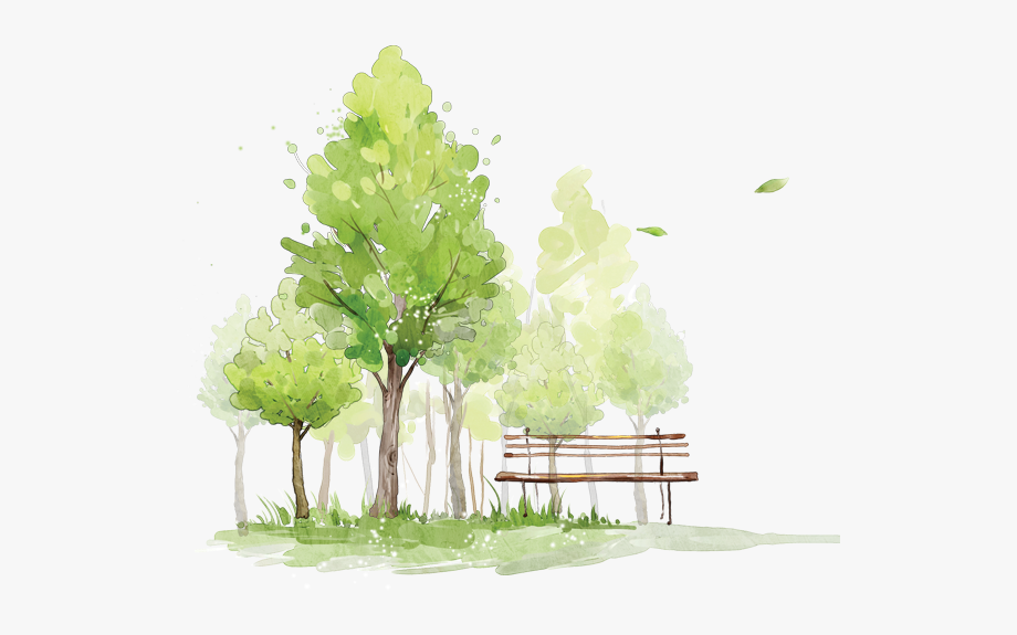 Bench clipart tree. Trees park watercolor png