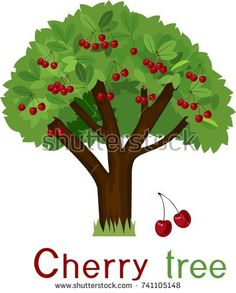 Earth day green tips. Bench clipart tree