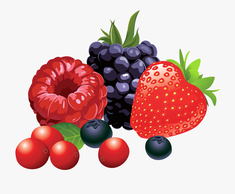 Berries clipart. Collection of free download