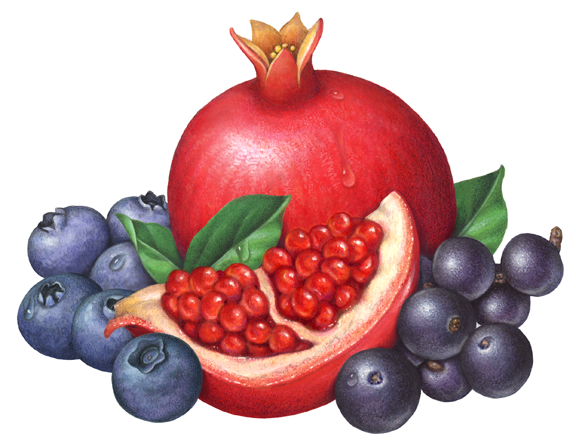 One whole pomegranate cut. Berries clipart acai berry