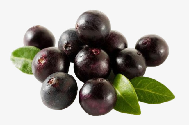 Png vectors psd and. Berries clipart acai berry