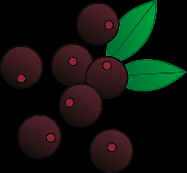 Berries clipart acai berry. Health benefits of belly