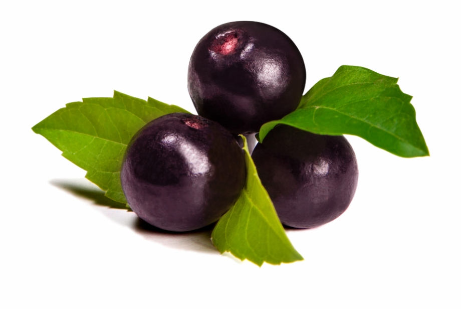 Berries clipart acai berry. Eg szs ges s