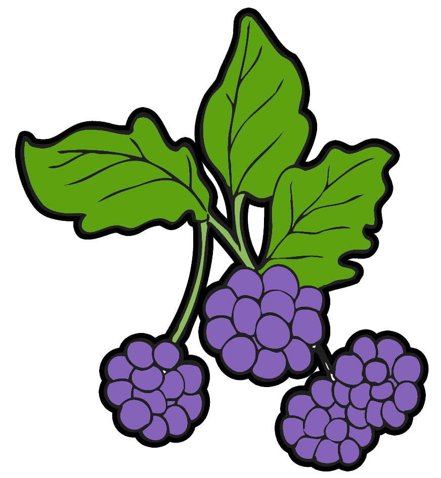 collection of wild. Bushes clipart blueberry