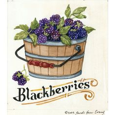 Bambi papais of blackberries. Blueberry clipart blueberry basket