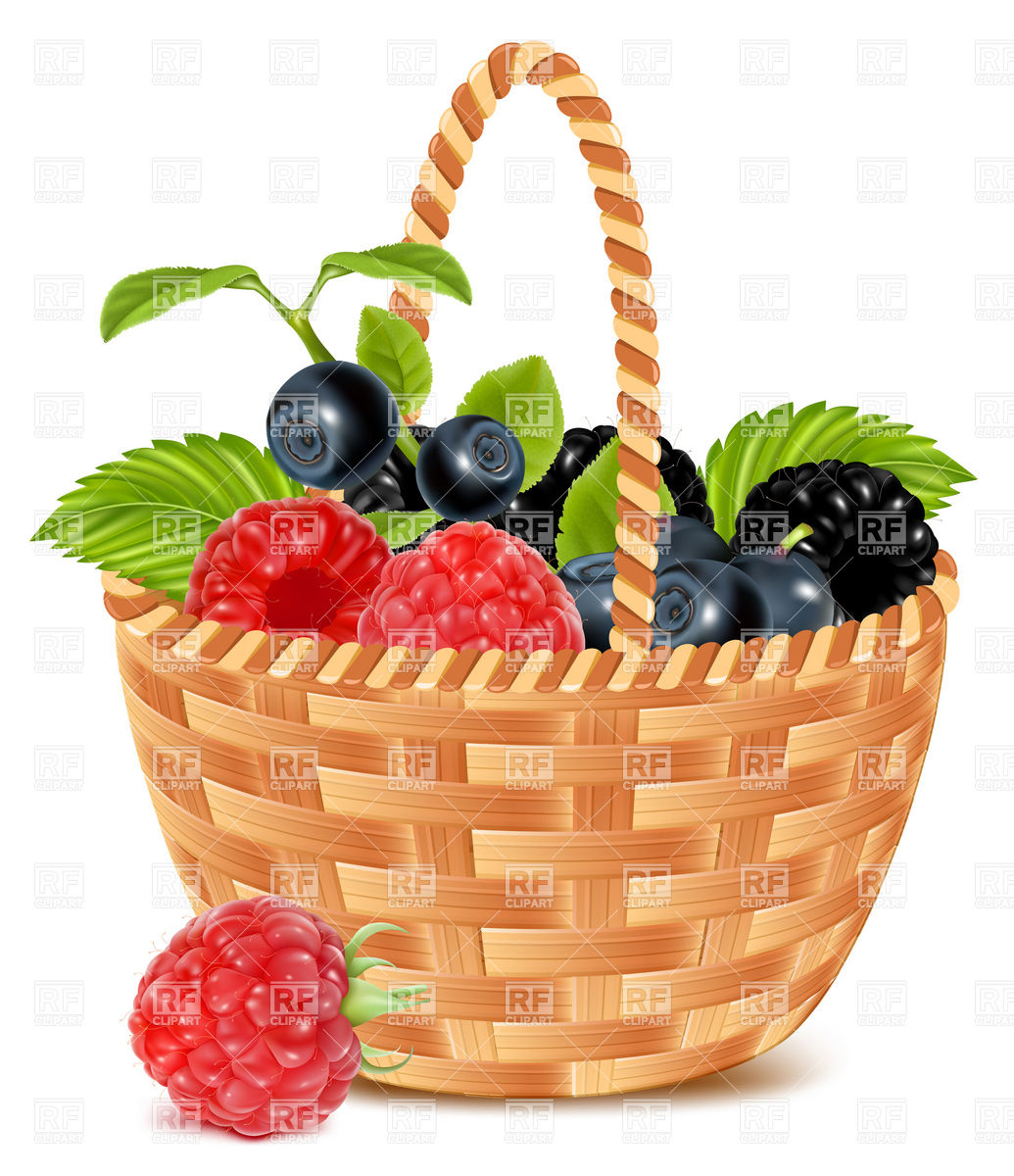 Of . Berries clipart berry basket