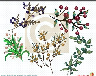 Etsy branches clip art. Berries clipart berry branch
