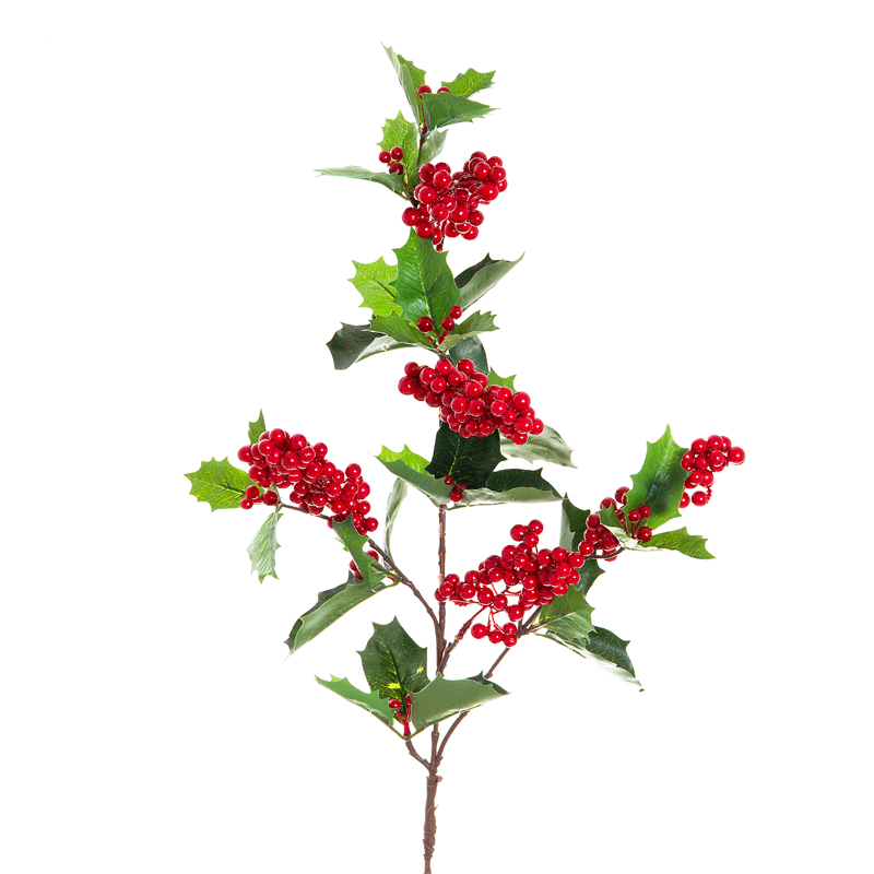 Berries clipart berry branch. Holly red clip art