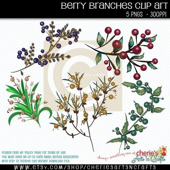 Branches clip art botanicals. Berries clipart berry branch