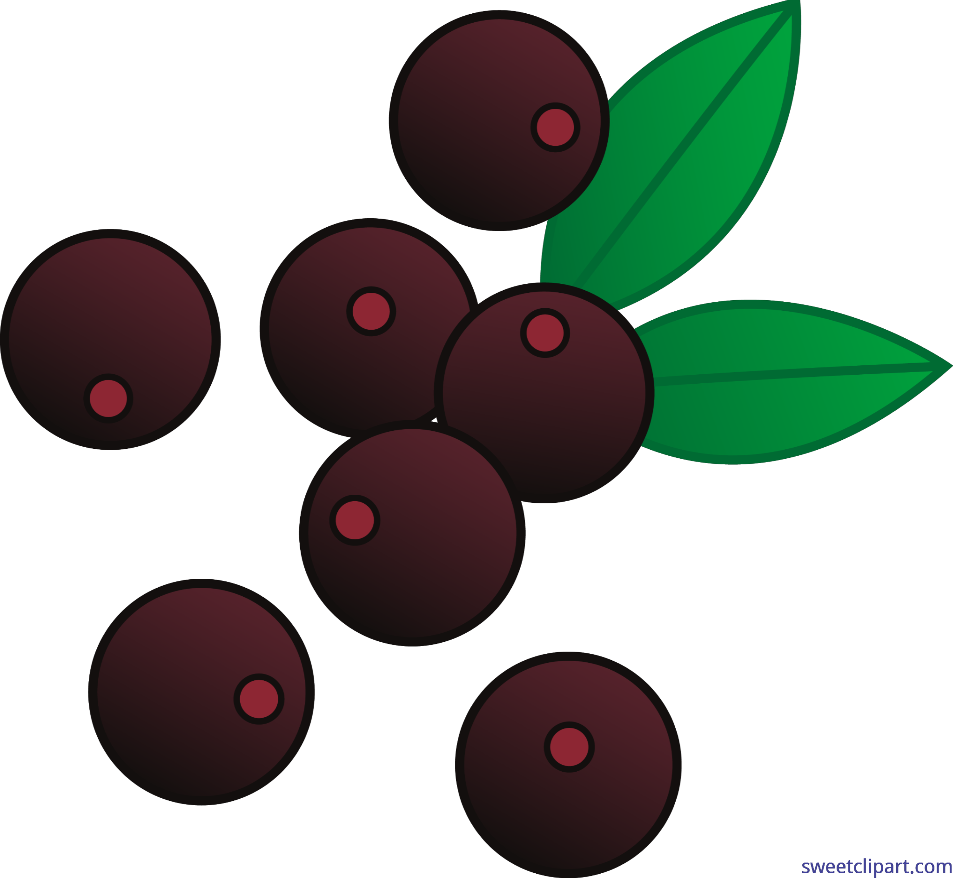 Acai clip art sweet. Berries clipart berry plant
