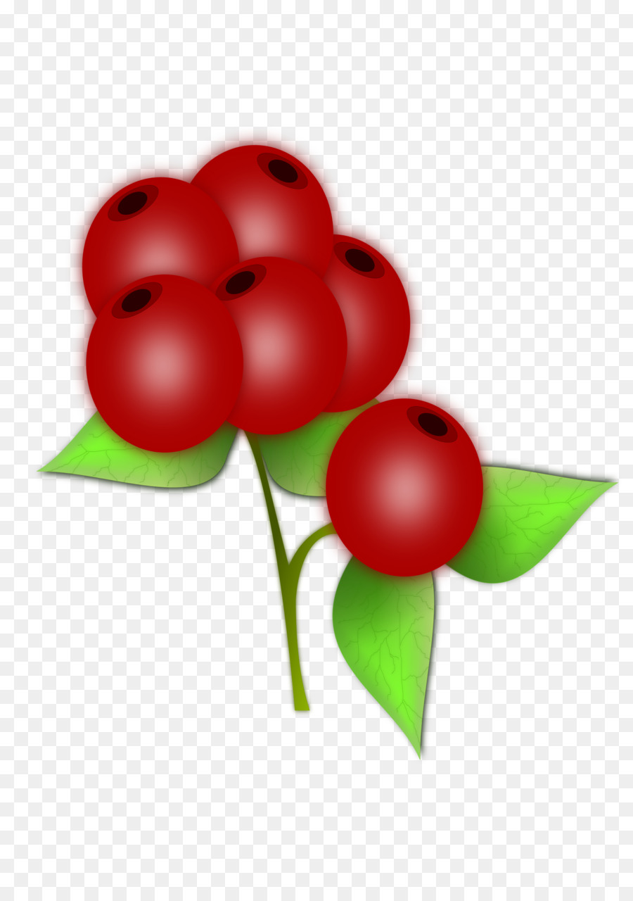 Berries clipart berry plant. Flower blueberry food transparent