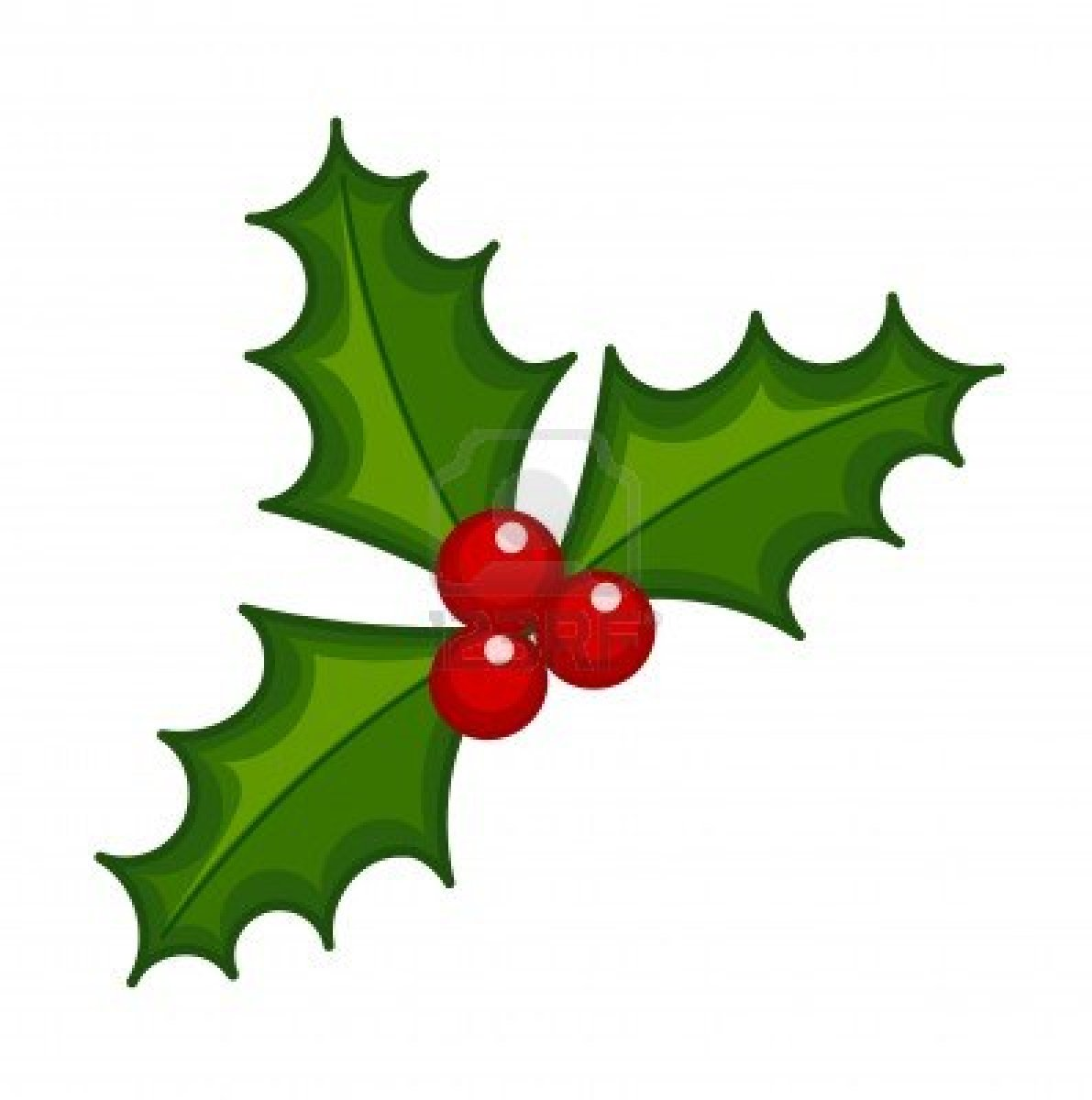 Berries clipart berry tree.  collection of holly