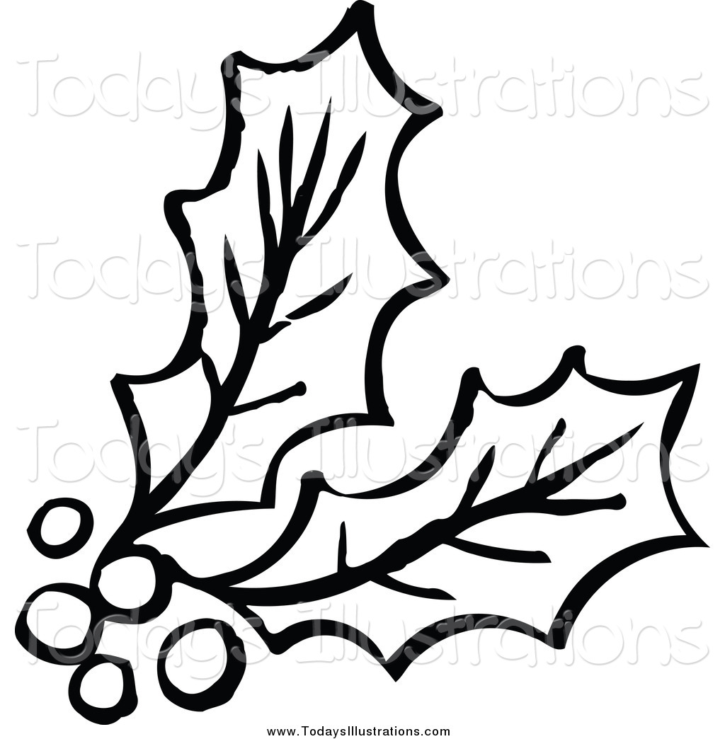Of a holly by. Berries clipart black and white