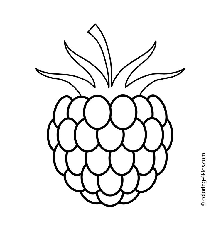 Raspberry drawing at getdrawings. Berries clipart black and white
