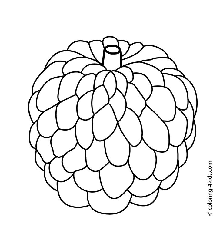 Drawing at getdrawings com. Berries clipart black and white