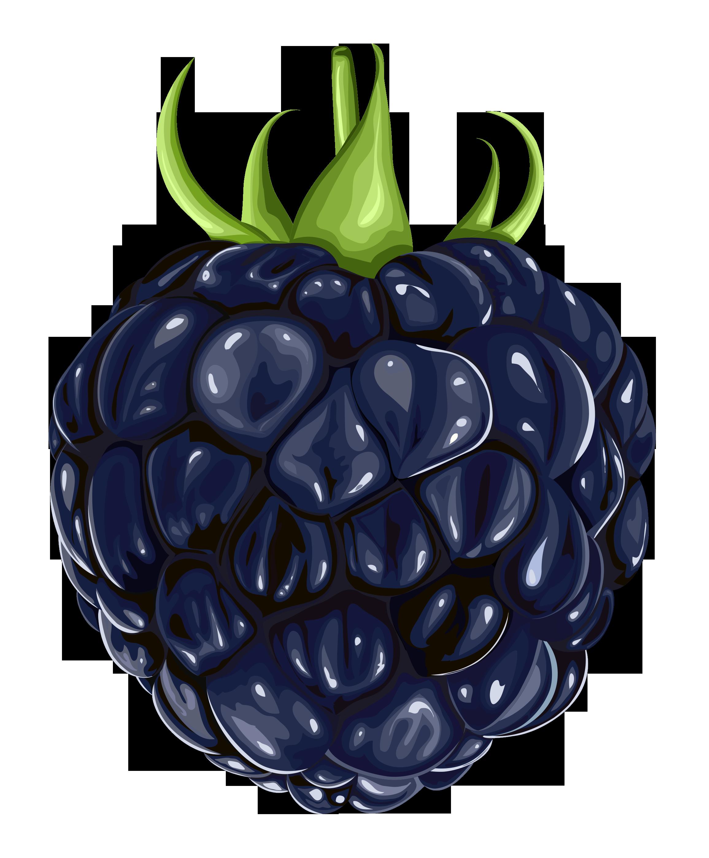 Emoji clipart fruit. Blackberry png gallery yopriceville