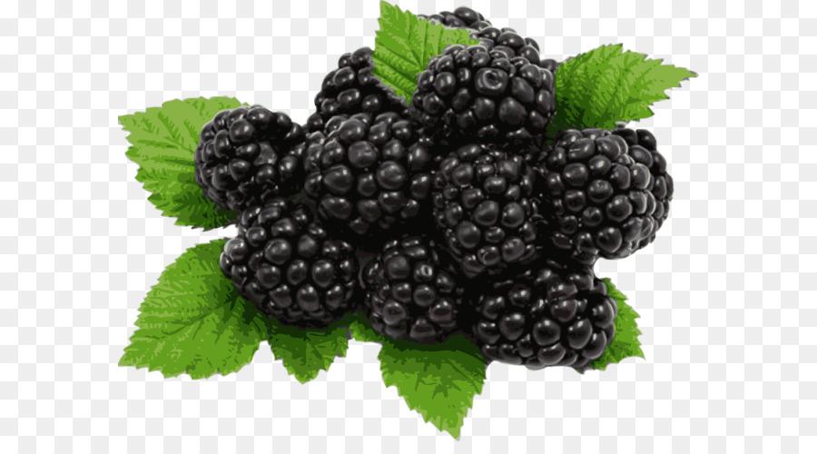 Juice pie organic food. Berries clipart blackberry