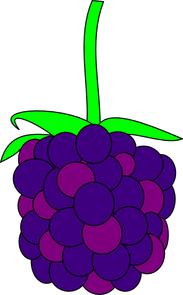 Berries clipart blackberry. Clip art at clker
