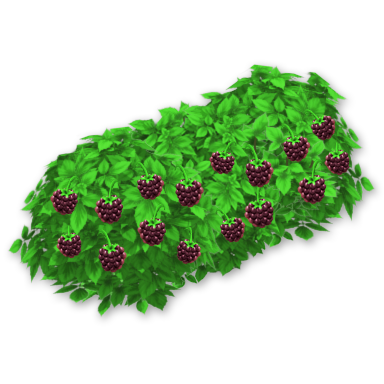 Bushes clipart berry. Blackberry hay day wiki