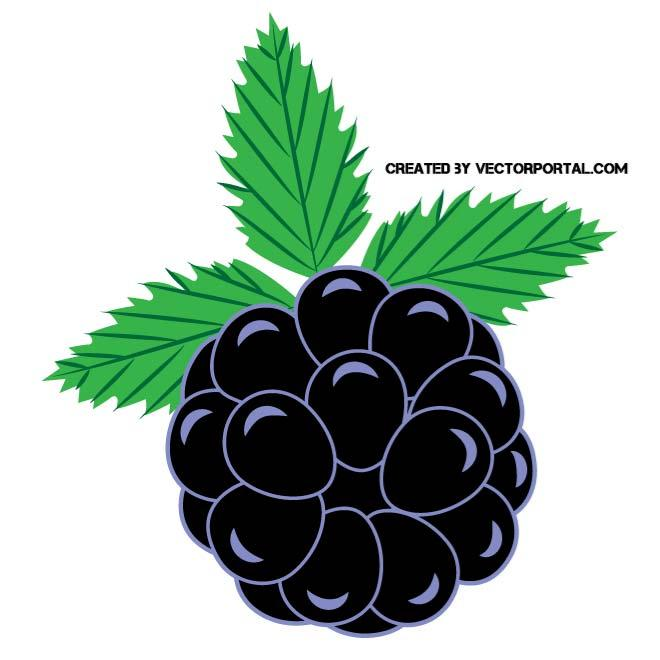 Free Black Berries Cliparts