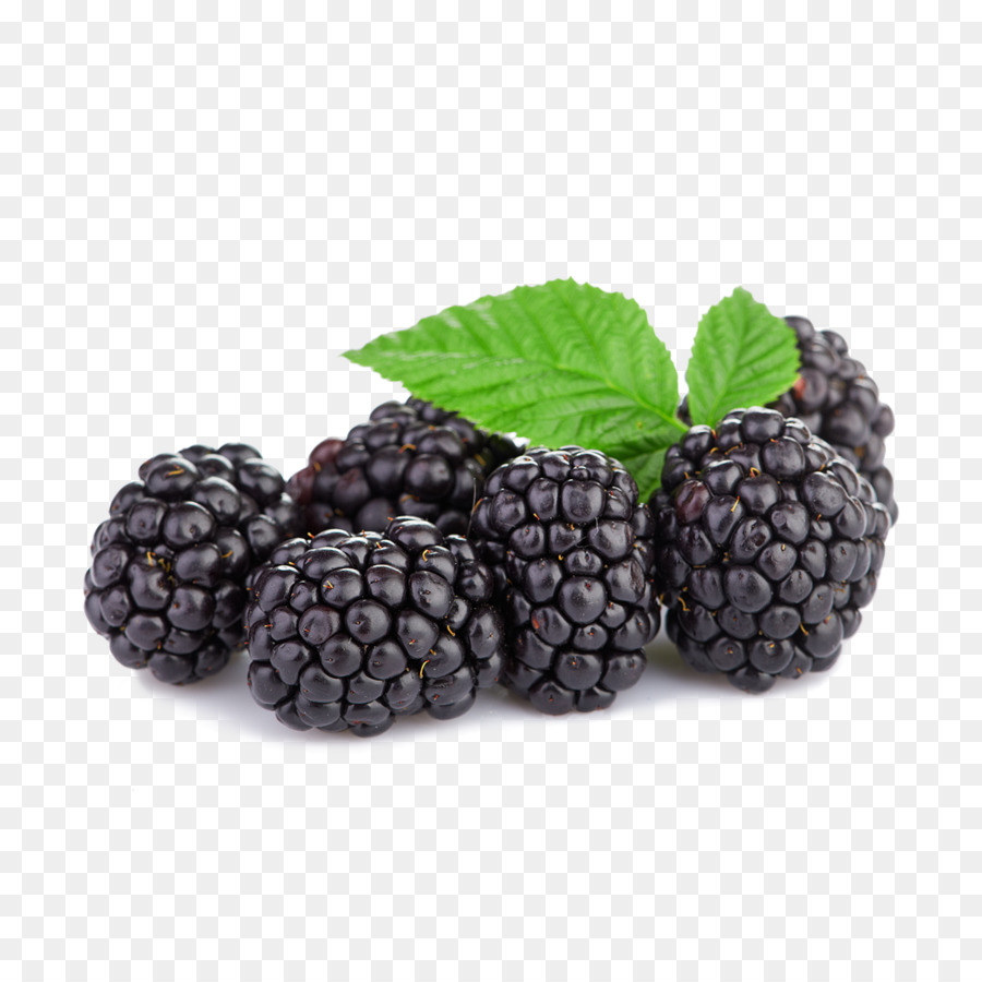 Berries clipart boysenberry. Tayberry raspberry blackberry png