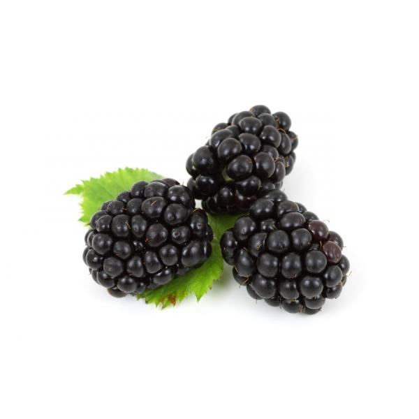 Fruit genesis fresh vegetables. Berries clipart boysenberry