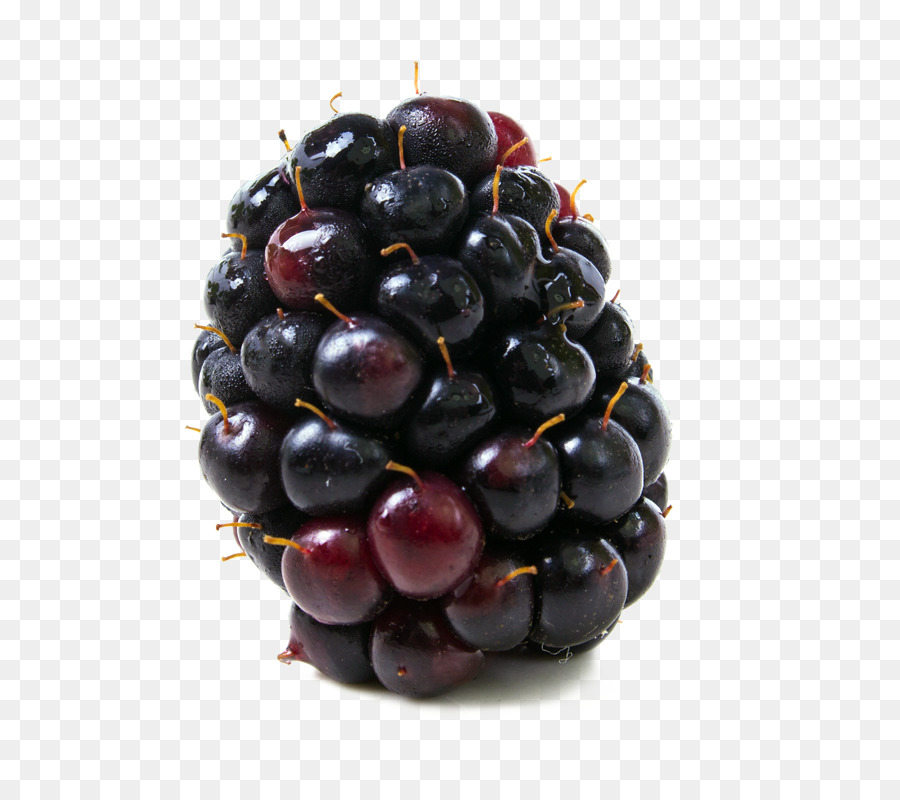 Berries clipart boysenberry. Food blackberry kotataberry png